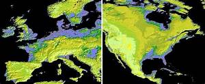 NASA Satellite Map Shows 99% Of Earth's Land Surface