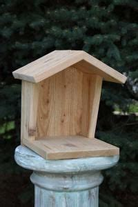 house  mourning doves robins blue jays phoebesplace  platform   garage deck