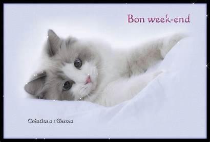 End Week Bon Coucou Suis Nouvelles Retour
