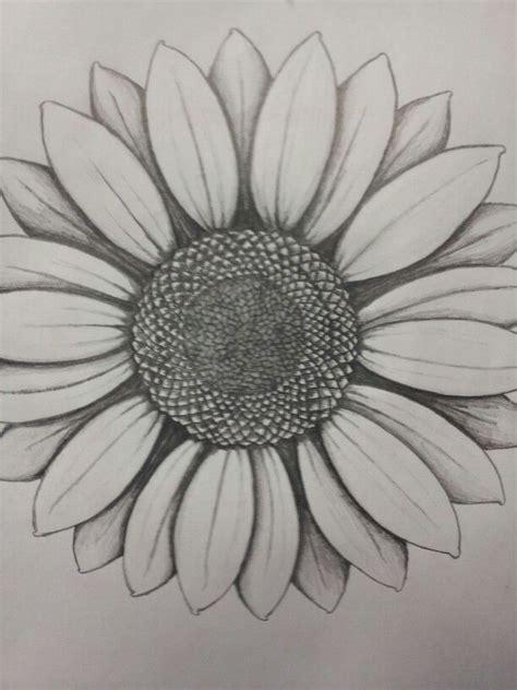 sunflower drawing ideas  pinterest