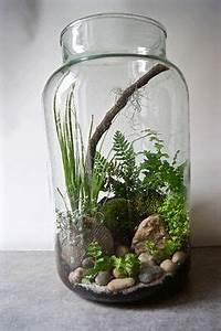 Acheter Terrarium Plante : hobbit inspired terrarium hobbit terraria and hobbit hole ~ Teatrodelosmanantiales.com Idées de Décoration