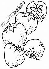 Strawberries Coloring Pages sketch template