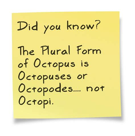 the plural of quot octopus quot is octopuses or octopodes not