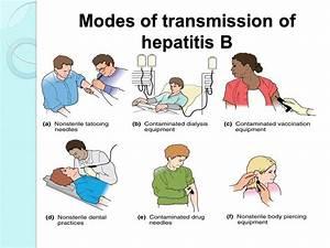 Download Narrat... Hepatitis A Transmission