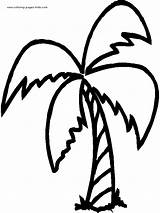 Coloring Pages Tree Palm Trees Printable Nature Sheets Sheet sketch template