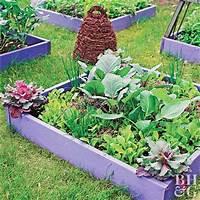 vegetable garden plans Small-Space Vegetable Garden Plan & Ideas