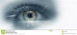 Vision Stock Photos