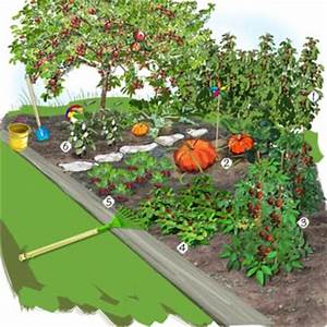 potager des enfants jardin potager jardineries truffaut With idee d amenagement de jardin 2 jardin verger jardin potager jardineries truffaut