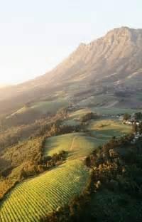 Stellenbosch Wine South Africa