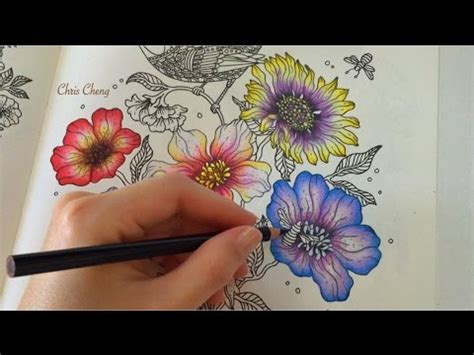 spring flower  daydreams coloring book coloring  colored pencils youtube