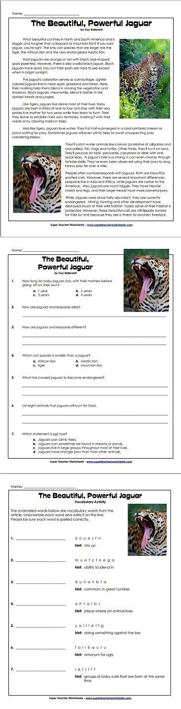 1000 images about reading and writing super teacher worksheets on pinterest magic tree