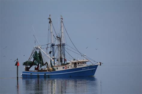 Shrimp Boat Pics by Bon Secour Shrimp Boat By Plashislandresident Photo