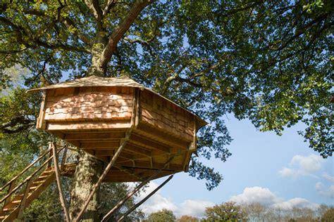 Tawny Owl Treehouse  Canopy & Stars