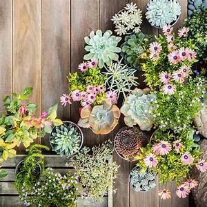 Grand Pot Plante : grand pot de fleurs s lection sp ciale de plus de 50 mod les ~ Premium-room.com Idées de Décoration