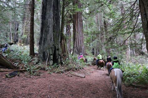riding horseback trail redwood creek minnesota canyon grand matadornetwork travelara