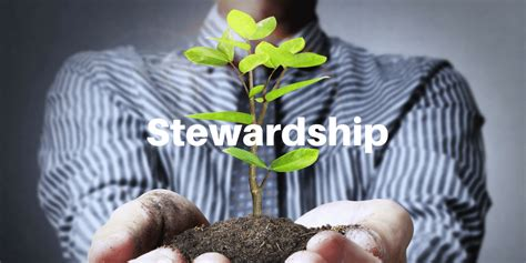 servant leaders steward