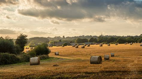 Record year for farm, land and residential transactions ...