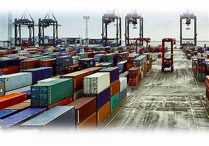 Customs Delle Sdoganamento Tecnico Dogane Tavolo Agenzia