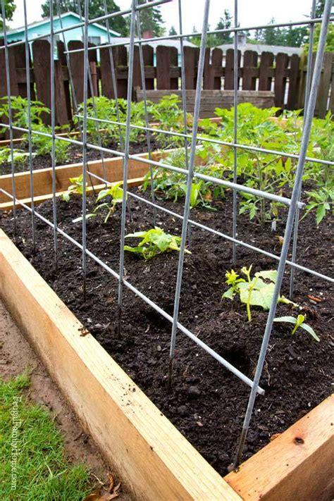 diy gardening diy garden trellis frugal family home