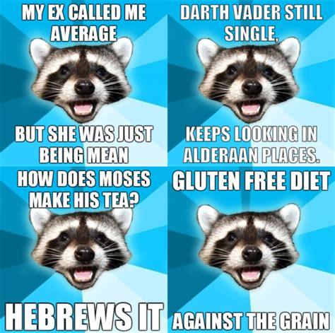 Lame Meme Memes Lame Pun Coon Image Memes At Relatably