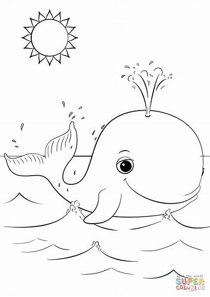 Whale Coloring Cartoon Colorear Dibujos Printable Beluga