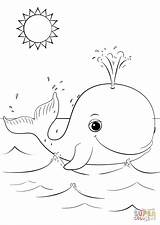 Whale Coloring Cartoon Pages Whales Killer Printable Animals Animal Drawing Sheets Cartoons Printables Supercoloring Bible Colouring Easy Under Preschool Ocean sketch template
