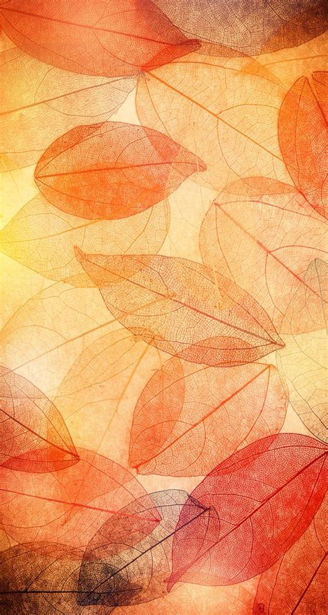 Autumn Lock Screen Wallpapers by 166 Best Iphone Autumn Wallpapers Images On