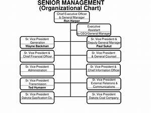 Create An Organizational Chart In Powerpoint Ppt Senior Management Organizational Chart Powerpoint