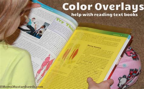 color overlay for reading crossbow education reading rulers and overlays s