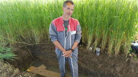 chambre agriculture dijon gérer la fertilité des sols en agriculture biologique rfi