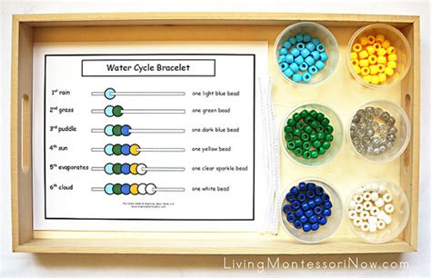 free water cycle printables and montessori inspired water 484 | 16946391017 3884ce7cb9 z