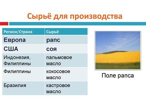 Производство биомассы для энергетических целей альтернативная энергетика. альтернативные источники энергии.