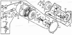 Honda Atv 1981 Oem Parts Diagram For Alternator    Recoil