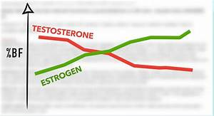 How To Naturally Increase Your Testosterone Levels For Muscle Growth  18 Studies