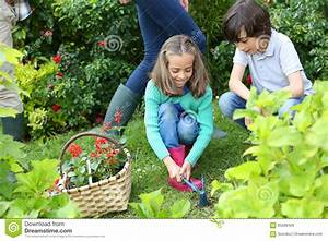 Children Helping Their Parents Gardening Stock Image ...