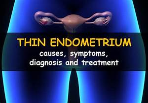 Thin Endometrial Lining  Causes  Symptoms  Diagnosis And