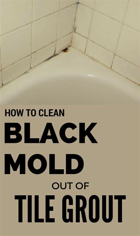 clean black mold   tile grout