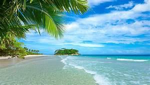 Blue sea and sky, beach, coast, palm trees, tropical ...