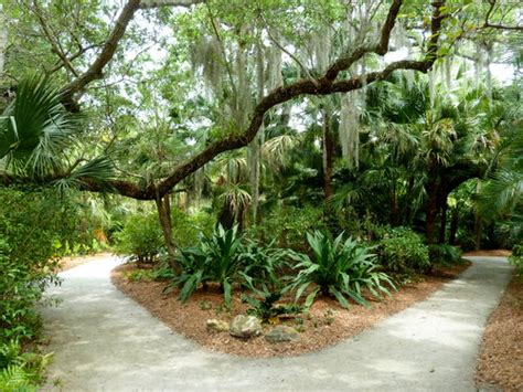 mckee botanical gardens top 10 things to do in vero florida
