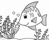 Fish Coloring Pages Tropical Printable Cool2bkids Seafood Butterfly Realistic Template Adults Getcolorings Adult Preschool Rocks Ocean Comely sketch template