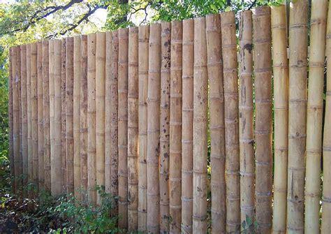 bambus sichtschutz garten sichtschutz aus bambusrohr selber bauen halbschalen