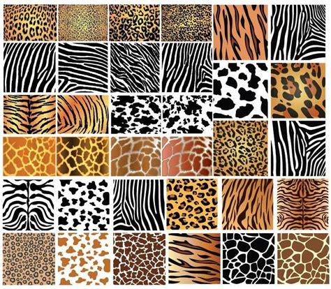 animal skin patterns patternstexturesand papers