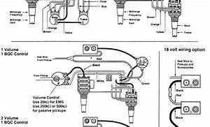 Directed Wiring Diagrams