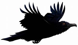 Some Interesting Facts About Raven | PNG All
