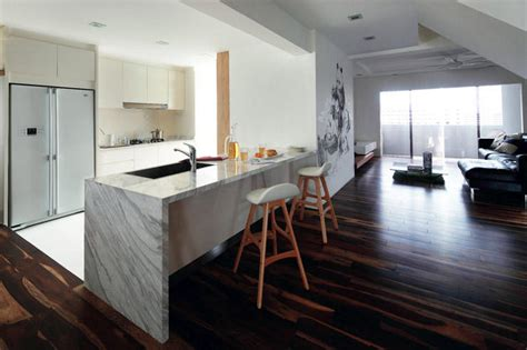stylish open concept kitchens  peninsula counters