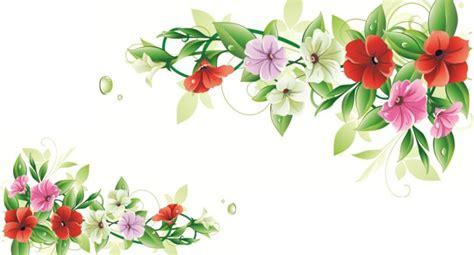 bloemen rand png flower photo frame wallpaper wallpaper hd collection