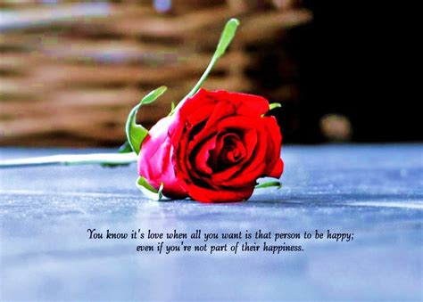 beautiful love quotes    rose flower images