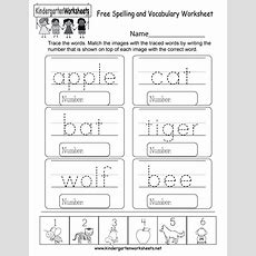Free Spelling And Vocabulary Worksheet  Free Kindergarten English Worksheet For Kids