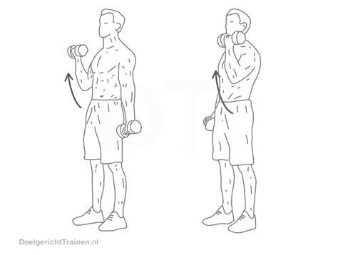 armen en schouders trainen