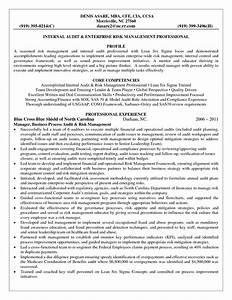 Enterprise Risk Management Resume Format Resume Templates